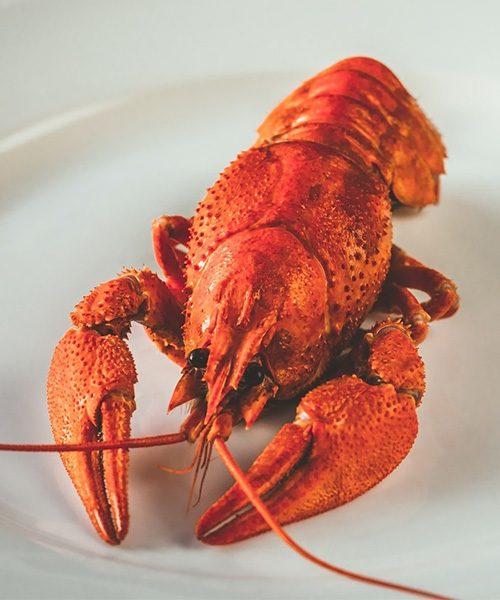 about-lobster-brettingtons-rochester-kent-steak-lobster